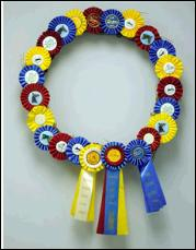 HorseShowRibbonWreath72a1